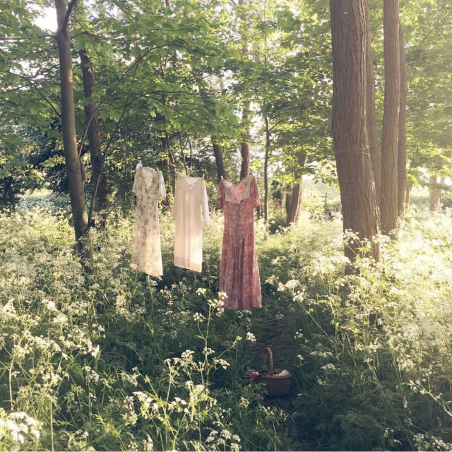 """""""Hanging dresses in the wood"""" stock image"""