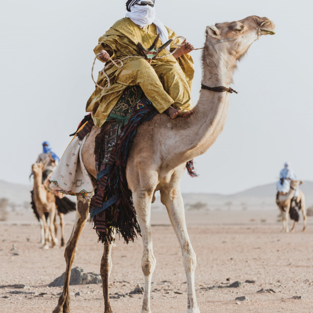 """Saharian Knights"" stock image"