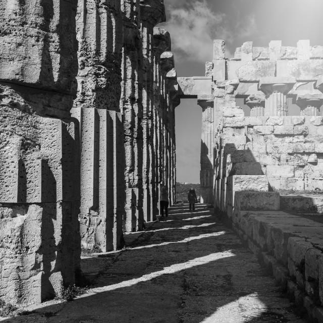 """Selinunte Ruins"" stock image"