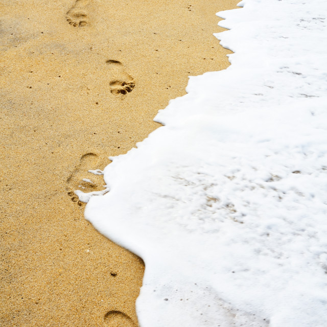 """Footprints along water edge"" stock image"