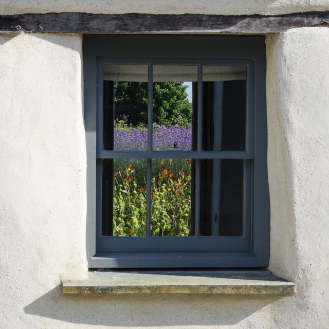 """Flowers through a Window"" stock image"