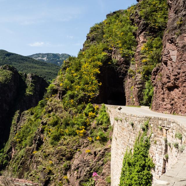 """""""Gorge de Dalius"""" stock image"""