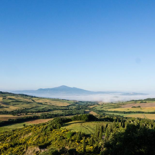 """Tuscan Landscape"" stock image"