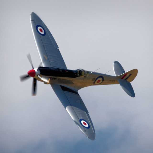 """Spitfire XIX"" stock image"