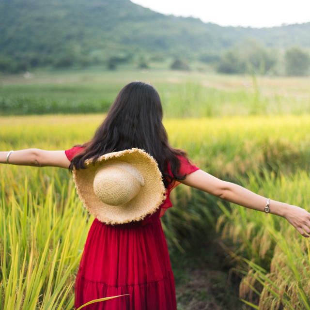 """Girl walking in a rice field wearing red dress"" stock image"