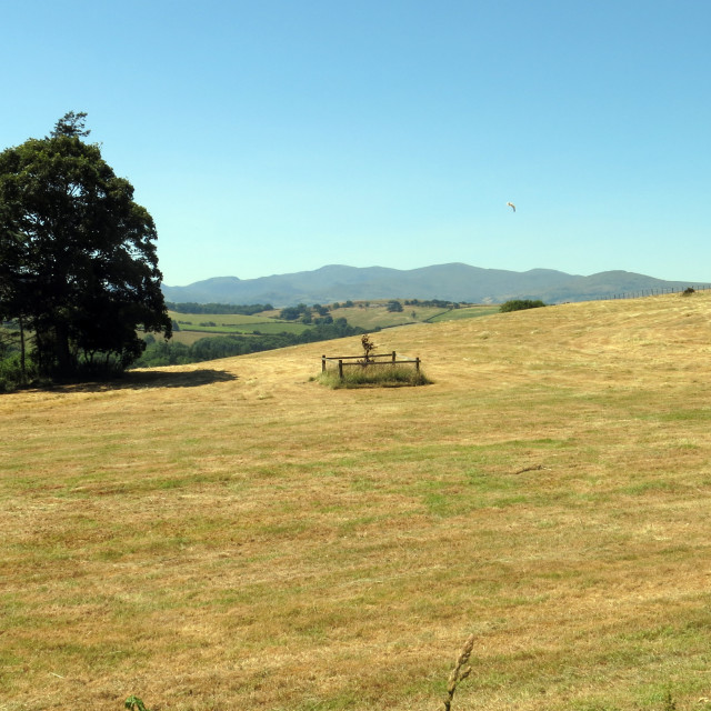 """Dry Farmland"" stock image"