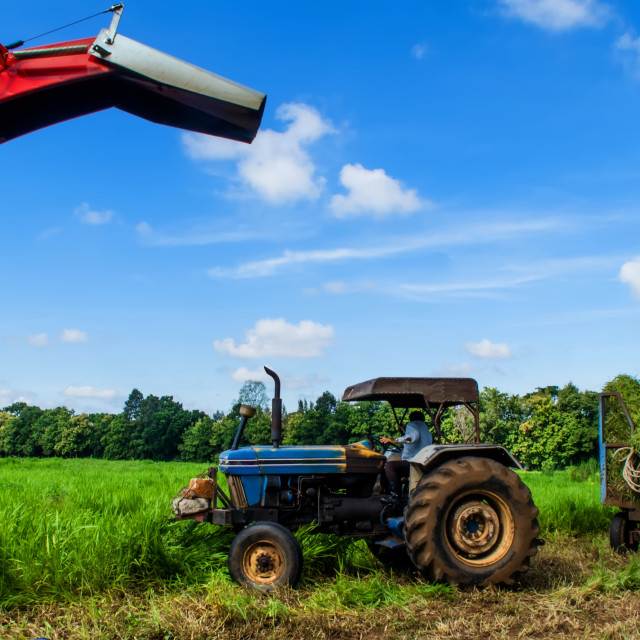 """Silage chopper"" stock image"