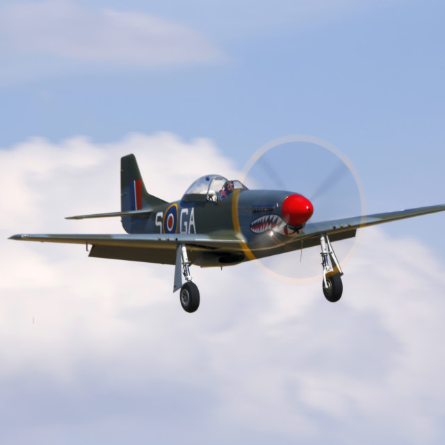 """""""P51d Mustang on finals"""" stock image"""