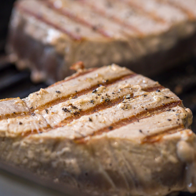 """Chargrilled Tuna Steaks"" stock image"