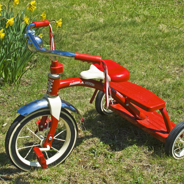 """Tricycle on The Grass"" stock image"