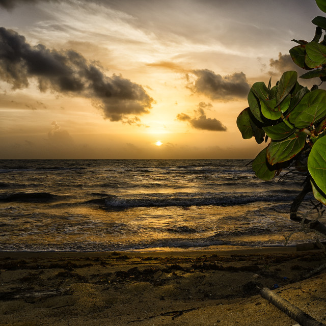 """Sunrise in the caribbean"" stock image"