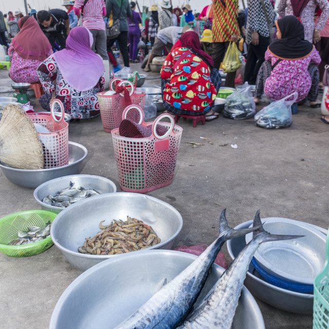 """Morning fish market on the banks of the Preaek Tuek Chhu River in Kampot town"" stock image"