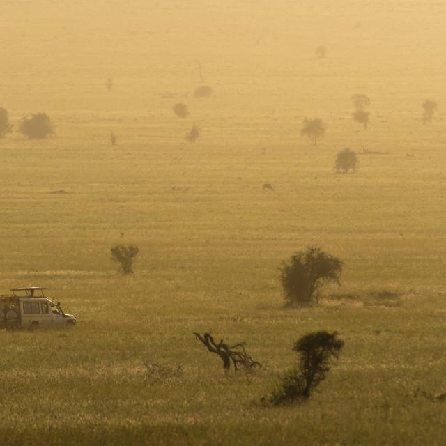 """""""A safari vehicle driving in the plains of Tsavo at sunset, Kenya."""" stock image"""