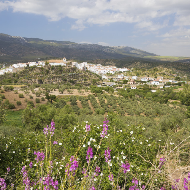 """""""View in spring over the white Andalucian village of El Burgo, Malaga..."""" stock image"""