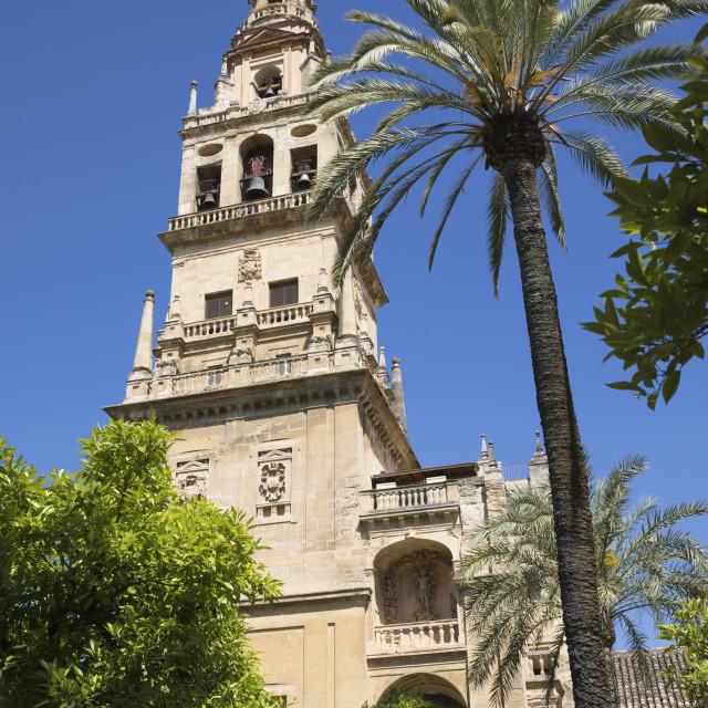 """Torre del Alminar belfry of the Mezquita viewed from the Patio de los..."" stock image"