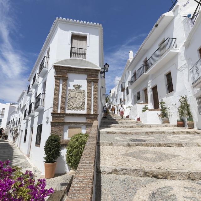 """""""Narrow streets with whitewashed Andalucian houses, Frigiliana, Malaga..."""" stock image"""