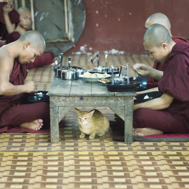 """Monks having lunch at Kalaywa Tawya Monastery in Yangon"" stock image"