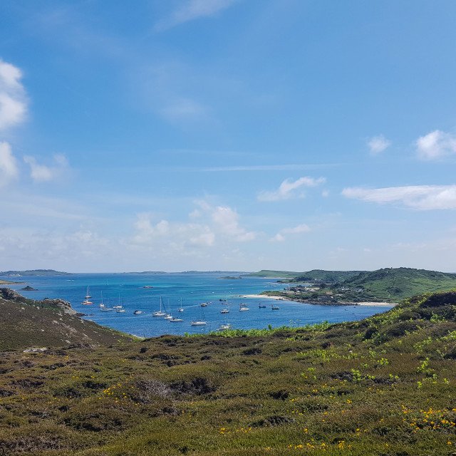 """Tresco, Isles of Scilly"" stock image"