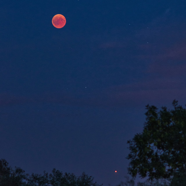 """Eclipsed Moon with stars and Mars"" stock image"