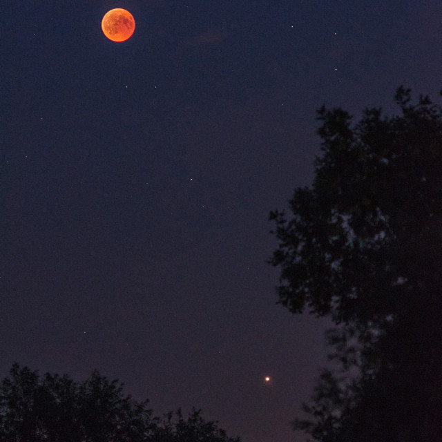 """Total lunar eclipse with planet Mars"" stock image"