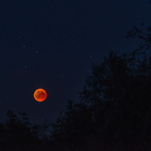 """Lunar eclipse in the night"" stock image"