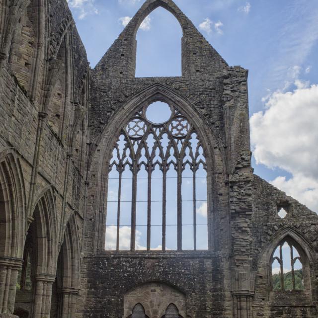 """Tintern Abbey"" stock image"