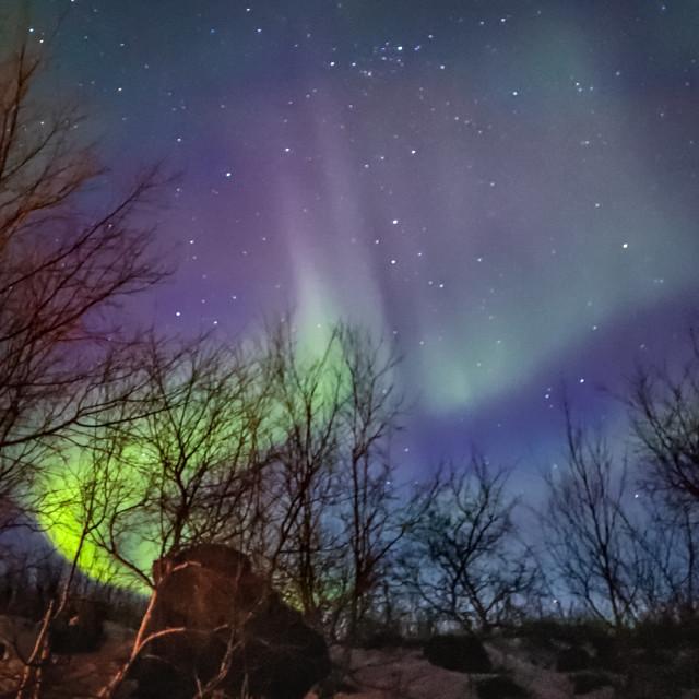 """""""Aurora Borealis - Lake Myvatn - Iceland"""" stock image"""