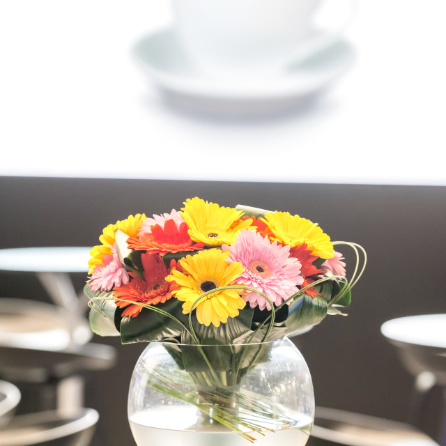 """cafe flowers"" stock image"