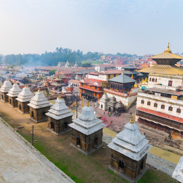 """""""Pashupatinath temple in Kathmandu, Nepal"""" stock image"""