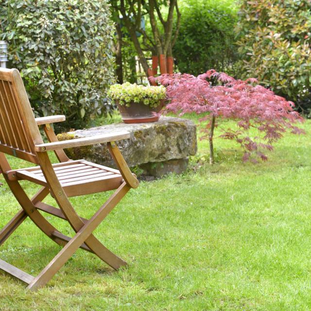 """chair in an ornamental garden"" stock image"