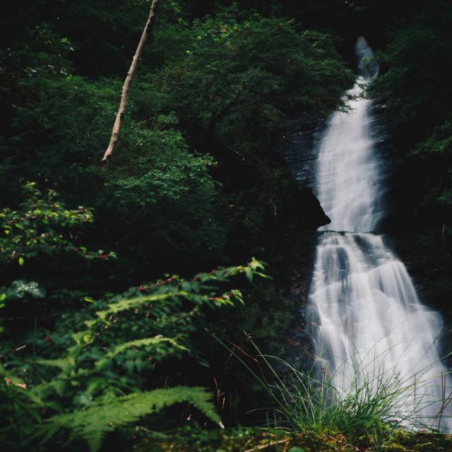 """waterfall in Scotland"" stock image"