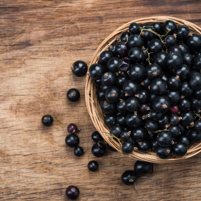 """Fresh ripe blackcurrant in basket, copy space on wooden board"" stock image"