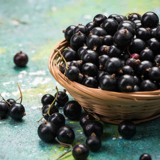 """Fresh ripe blackcurrant in basket"" stock image"
