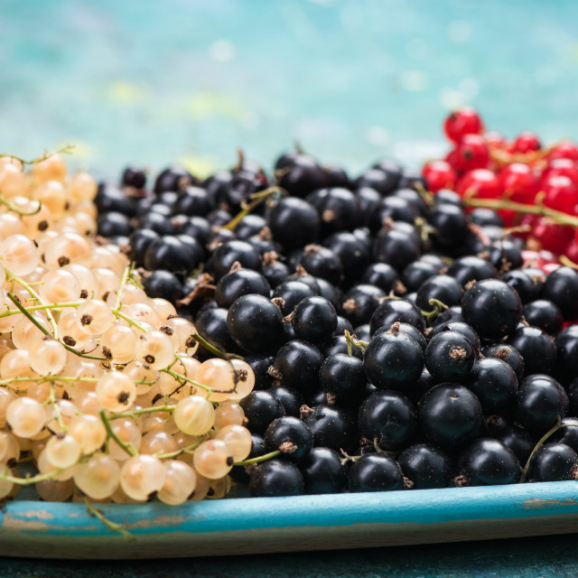 """White currant, redcurrant and blackcurrant, on wooden plate"" stock image"