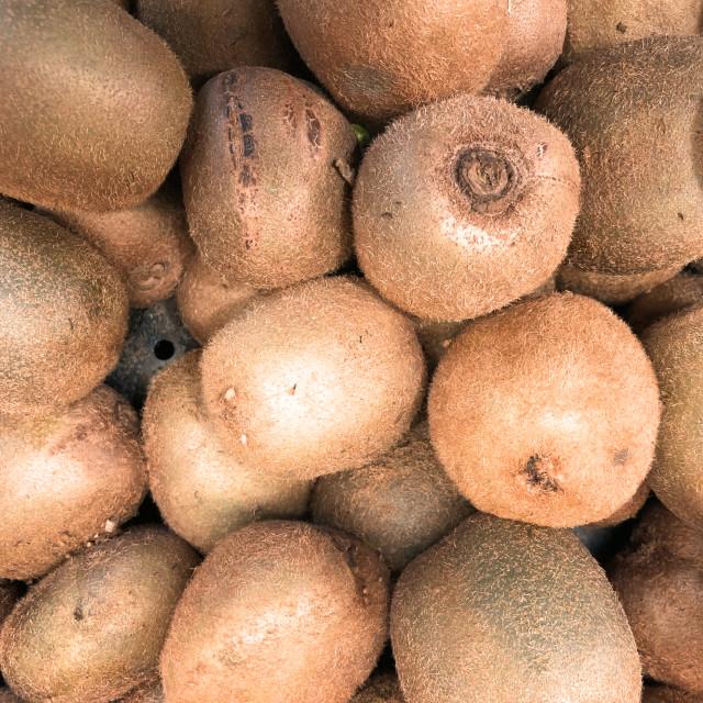"""""""Green Kiwifruit"""" stock image"""