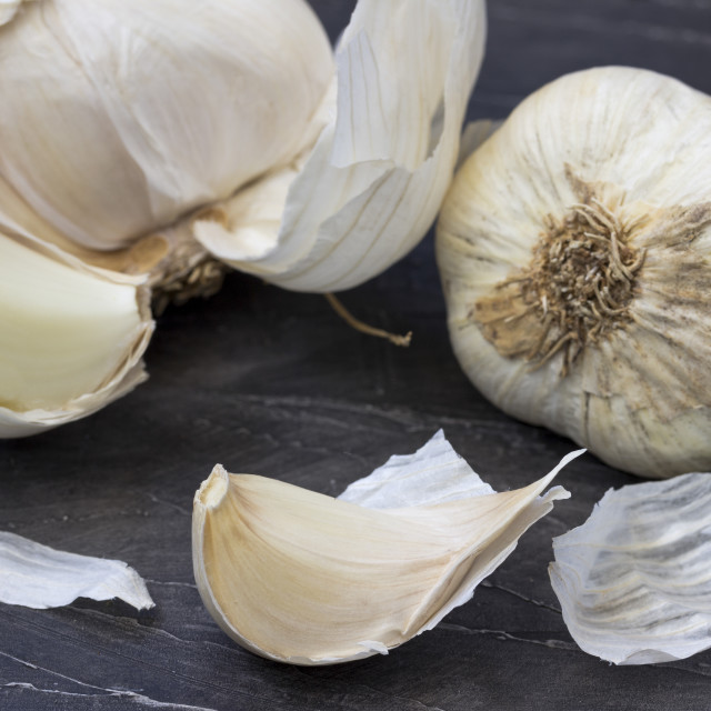 """""""Garlic on the wooden background"""" stock image"""