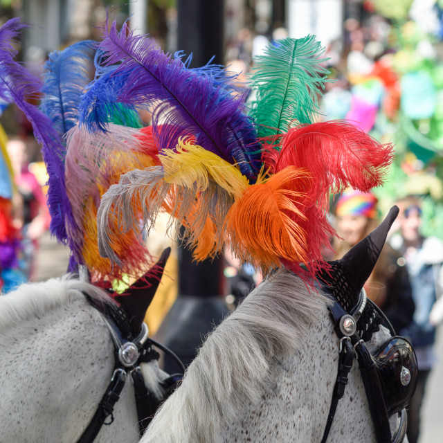 """Nottingham Pride 2018,UK.Horses with rainbow feathers headdress."" stock image"