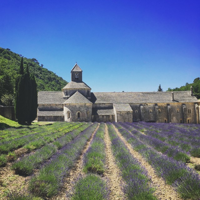 """Sénanque Abbey, Provence"" stock image"
