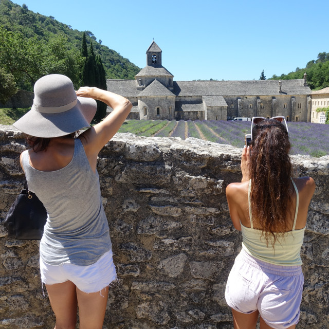 """""""Tourists at Sénanque Abbey, Provence"""" stock image"""