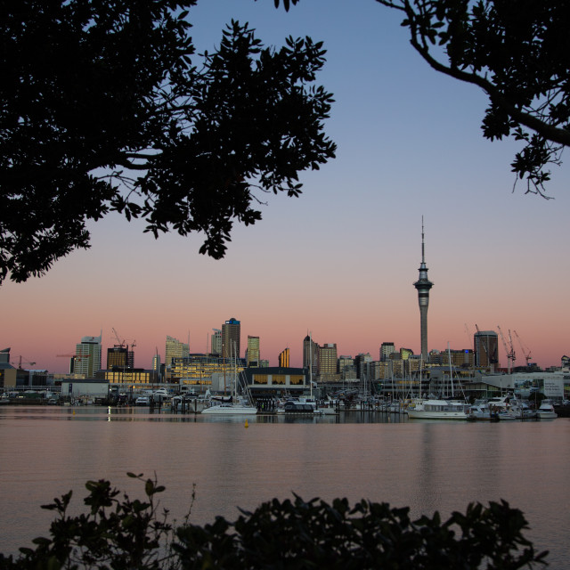 """Auckland , New Zealand"" stock image"