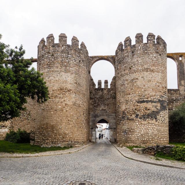 """""""Porta de Beja, Serpa, Portugal"""" stock image"""