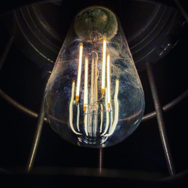 """Single lightbulb"" stock image"
