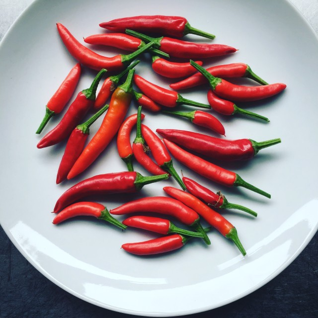 """Chilli peppers"" stock image"