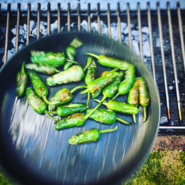 """Cooking Padrón peppers"" stock image"