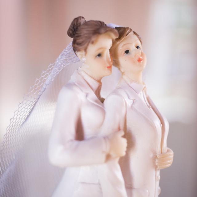 """Cake topper lesbian wedding couple"" stock image"