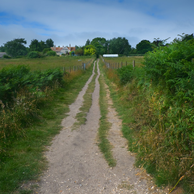 """Dirt Path/Road Through farmland, UK"" stock image"