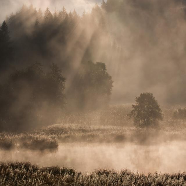 """""""An amazing morning at Geroldsee I"""" stock image"""