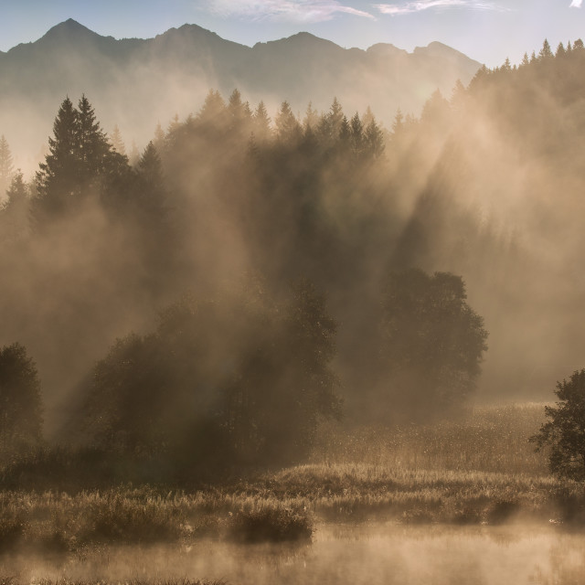 """An amazing morning at Geroldsee II"" stock image"