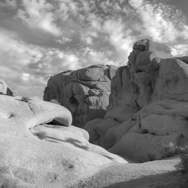 """Joshua Tree state park rock formations bw"" stock image"