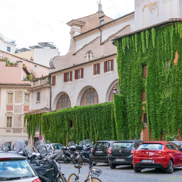 """Ivy or vines grow up the walls of this old roman building."" stock image"